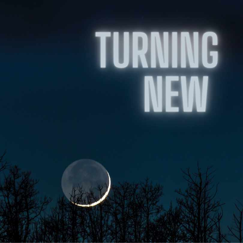 The thinnest sliver of a crescent moon hangs low in a dark sky, behind a silhouette of trees. The headline
